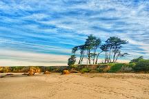 Pudding Creek Beach, Fort Bragg, United States