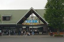 Mother Farm, Futtsu, Japan