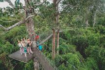Angkor Zipline, Siem Reap, Cambodia