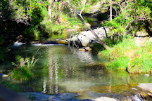 Cedar Creek Falls, Tamborine National Park, Australia