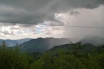 Kangra Valley, Dharamsala, India