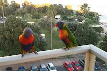 Dunningham Reserve, Coogee, Australia