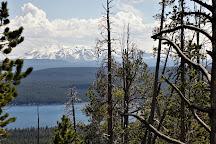 Elephant Back Mountain, Yellowstone National Park, United States