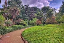 Osho Garden, Pune, India