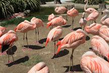 Santa Barbara Zoo, Santa Barbara, United States