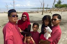 Pantai Kelanang Beach, Banting, Malaysia
