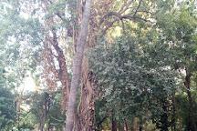 Patrice Lumumba Garden, Blida, Algeria