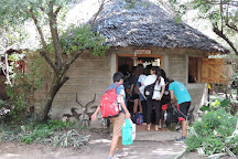 African Home Adventure Safaris, Nairobi, Kenya