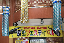 Neo Park Okinawa, Nago, Japan