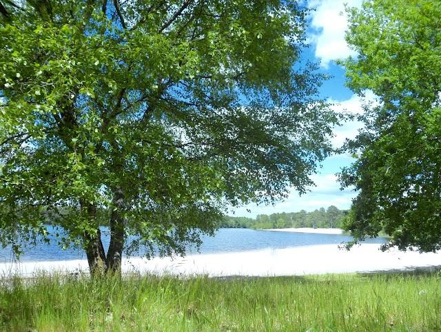 Lac d'Hostens