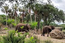 Kilimanjaro Safaris, Orlando, United States