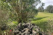 Tatum Ridge Golf Links, Sarasota, United States