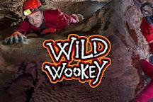 Wild Wookey, Wells, United Kingdom