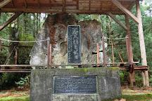 Jōmon Sugi, Kumage-gun Yakushima-cho, Japan