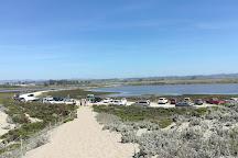 Moss Landing State Beach, Moss Landing, United States