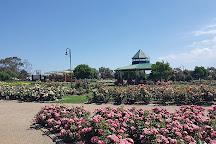 Mornington Botanical Rose Gardens, Mornington, Australia
