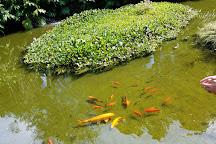 Kula Botanical Garden, Kula, United States