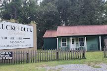 Lucky Duck Distillery, Yemassee, United States