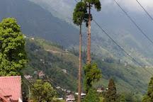 Ava Art Gallery, Darjeeling, India