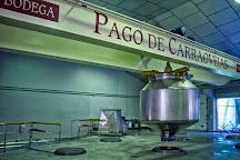 Pago de Carraovejas - Finca y Bodega, Penafiel, Spain