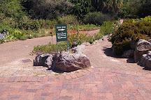 Kirstenbosch National Botanical Garden, Newlands, South Africa