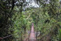 Senderos Los Tucanes, La Fortuna de San Carlos, Costa Rica