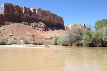 Wild Expeditions, Bluff, United States