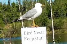 Wedgewood Wildlife Sanctuary, Fairbanks, United States