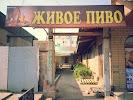 Живое пиво на фото Богодухова