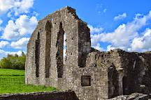 Priory of St. John The Baptist, Trim, Ireland