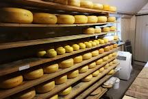 Cheesefarm Hoogerwaard, Ouderkerk aan den IJssel, The Netherlands