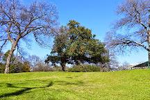 Reverchon Park, Dallas, United States