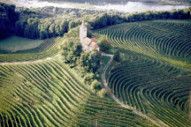 Ptuj Wine Cellar, Ptuj, Slovenia