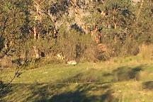 Cardinia Reservoir Park, Emerald, Australia