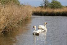 Ross' Wildlife Boat Trips, Horsey, United Kingdom