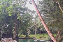 Lonoy Cold Spring, Jagna, Philippines