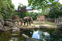 Tennoji Zoo, Osaka, Japan