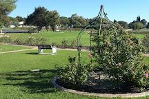 Durbanville Rose Garden, Durbanville Hills, South Africa