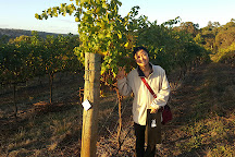 Sunnyhurst Wines, Bridgetown, Australia