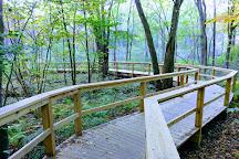 Acton Arboretum, Acton, United States