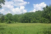 Sand Creek Conservation Area, Decatur, United States