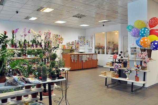 Магазины цветов в черкассах