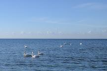 Mosede Fiskerihavn, Greve, Denmark