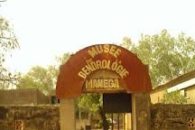 Musee De La Bendrologie de Manega, Ouagadougou, Burkina Faso
