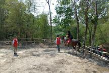 Bale Kuda Stable, Sleman District, Indonesia