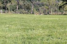 Del Valle Regional Park, Livermore, United States