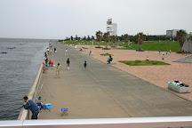 Jonanjima SeasidePark, Ota, Japan