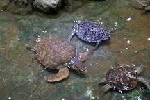 Beihai Underwater World, Beihai, China