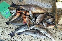 Fish Market, Tripoli, Libya