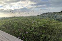 Varn Park, Palm Coast, United States